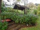 GardenOnEdge_35