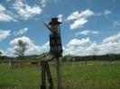 Scarecrows_21